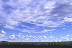 Alberta Big Sky